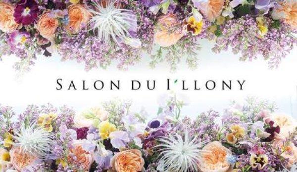 画像1: 2017年 Salon du I'llony  サロンドアイロニー (1)