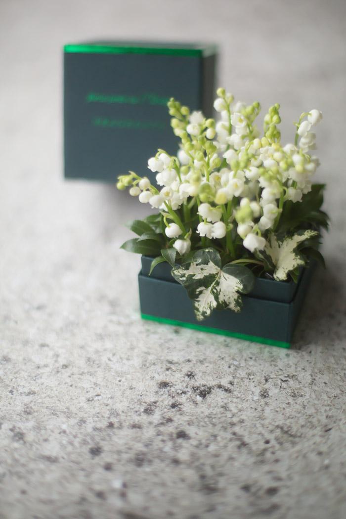 画像1: ミュゲのFRAGRANCE BOX【4/29-5/1着限定】