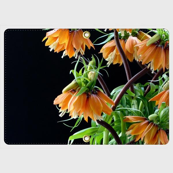 画像1: (fritillaria) パスポートケース