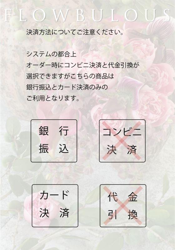画像4: 写真集「パリの花束」【サイン入/ポストカード付】